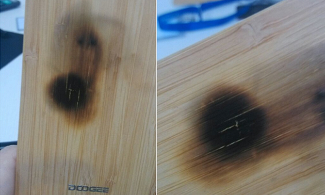 1439364919_bamboo-back-survives-the-fire...-002.jpg